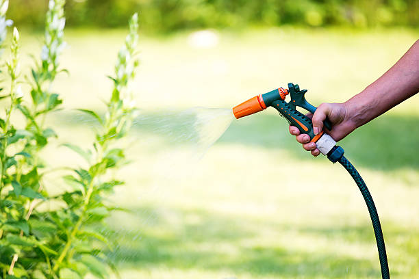 woman watering flowers with hose sprayer - garden hose stock pictures, royalty-free photos & images