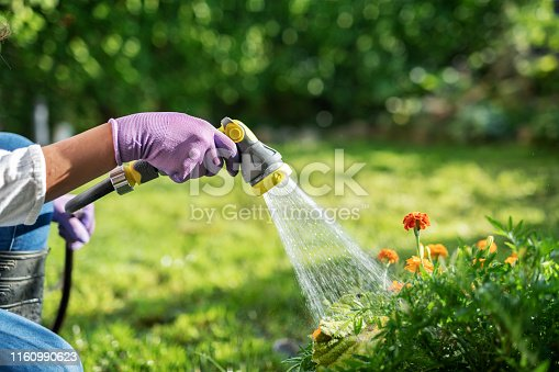 Close up of unrecognizable female gardener hand watering garden with hose. holding water hose.