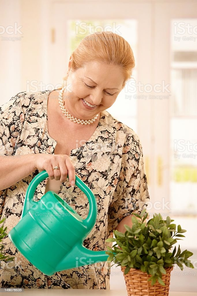 Woman watering plant royalty-free stock photo