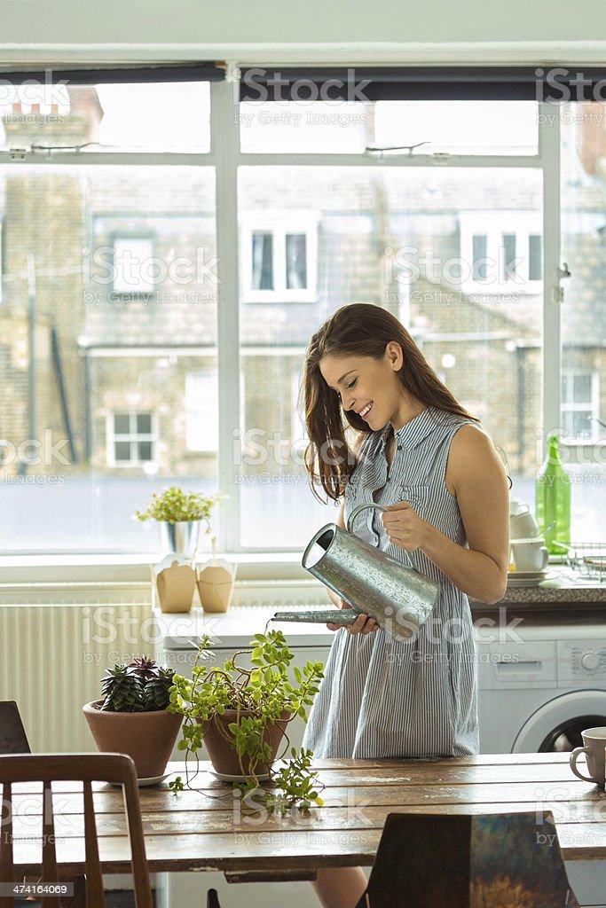 Woman watering plants stock photo