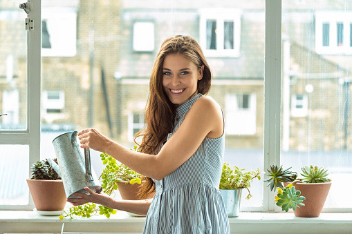 Woman Watering Plants Stock Photo - Download Image Now
