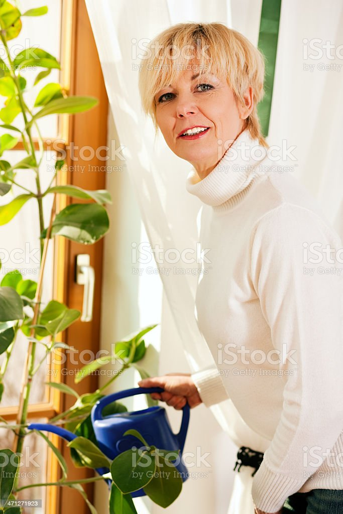 Woman watering the flowers at home royalty-free stock photo