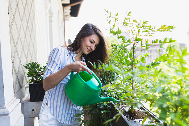 woman watering your plants - watering stock pictures, royalty-free photos & images