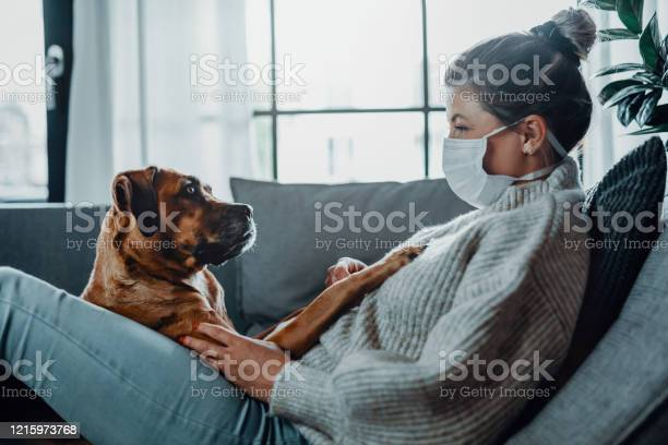 Woman wearing a protective face mask cuddles plays with her dog at picture id1215973768?b=1&k=6&m=1215973768&s=612x612&h=yorfy79i1 igrbo umuuw2vcnluvkredottki02abwm=
