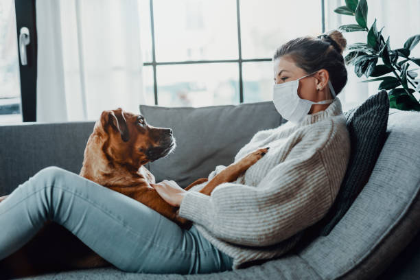 Woman wearing a protective face mask cuddles plays with her dog at picture id1215973935?b=1&k=6&m=1215973935&s=612x612&w=0&h= 2vgvl xzndvl wk1 l4t0r ekesswu6webazdler7k=