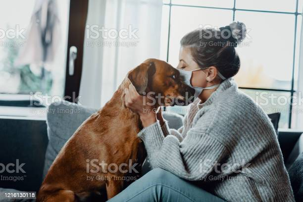 Woman wearing a protective face mask cuddles plays with her dog at picture id1216130118?b=1&k=6&m=1216130118&s=612x612&h=9bur3gvajw7qc3abf05dyzhczpprotjt08eu6dwtvyk=