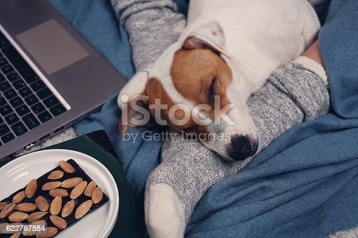 618750646 istock photo Woman wearing cozy socks relaxing at home 622767584
