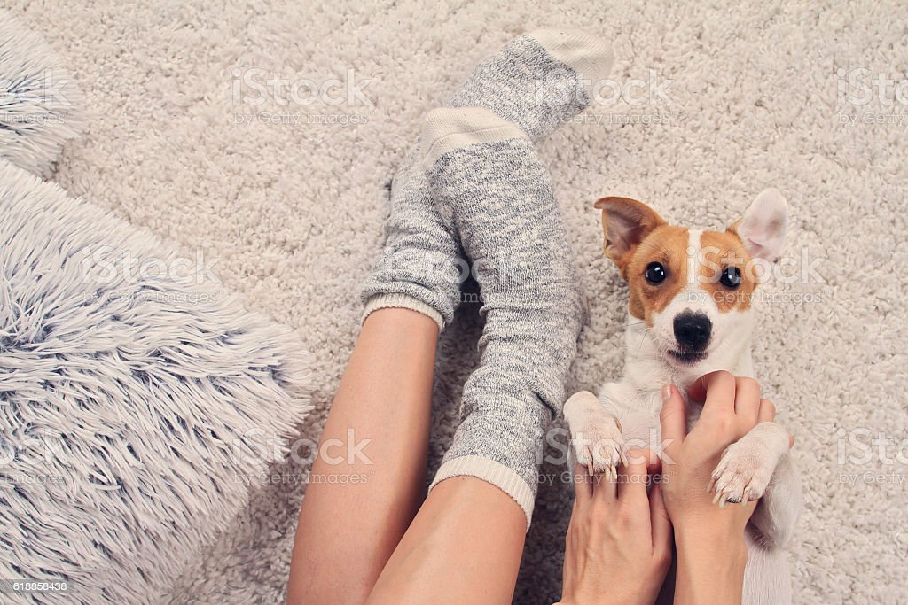 Cтоковое фото Woman wearing cozy warm wool socks relaxing at home