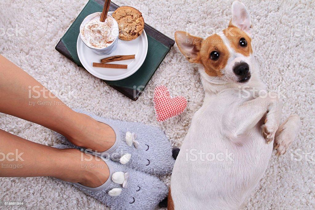 Woman wearing cozy warm wool socks relaxing at home – zdjęcie