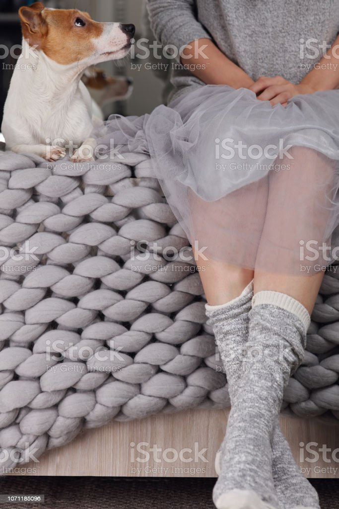 Woman wearing cozy warm wool socks relaxing at home, playing with dog, jack Russel terrier. Soft, comfy lifestyle. – zdjęcie