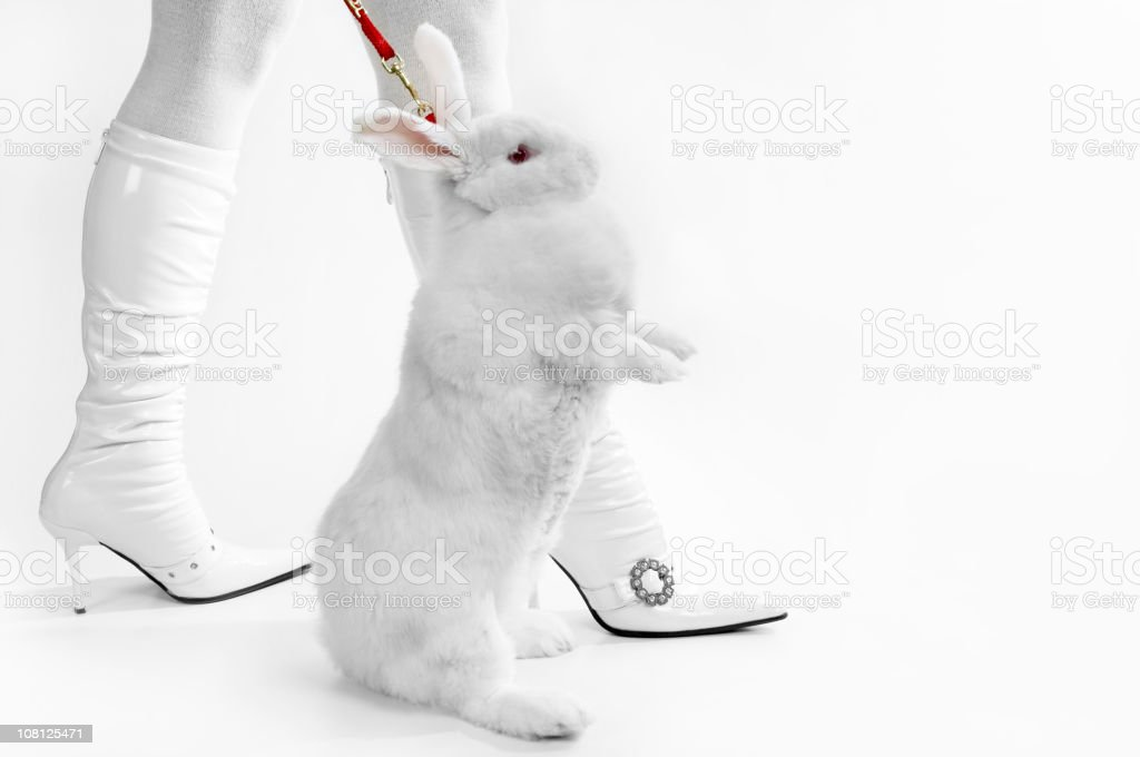 Woman Wearing White Boots Taking Rabbit for Walk royalty-free stock photo