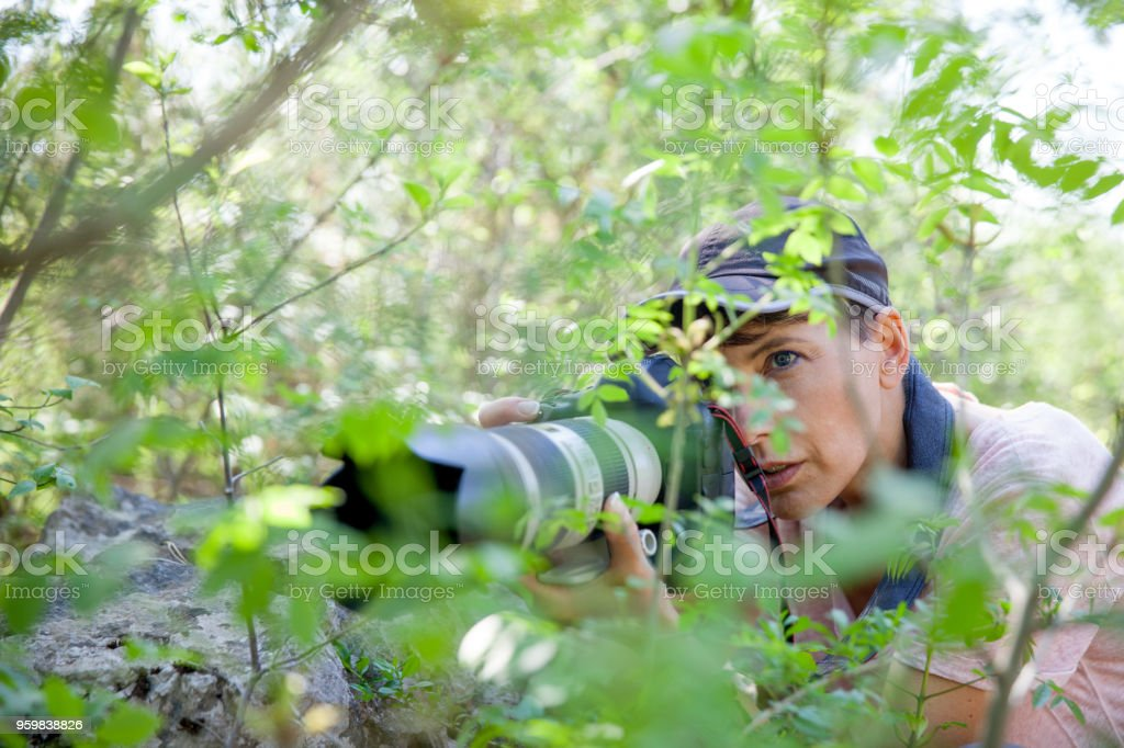 Woman Wildlife Photographer Waiting in Bushes