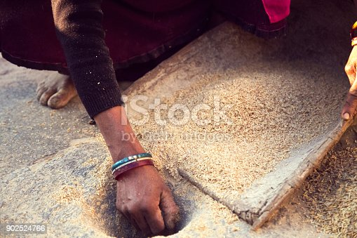 Indian woman winnowing whole wheat grain