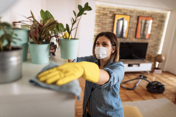 Woman wiping dust from shelf and other furniture in living room stock photo