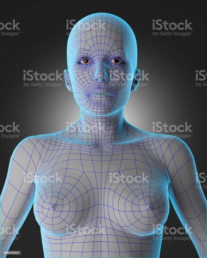 Woman wireframe royalty-free stock photo