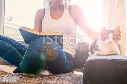 istock woman with a cat by the window reading a book / woman reading a book 863843356