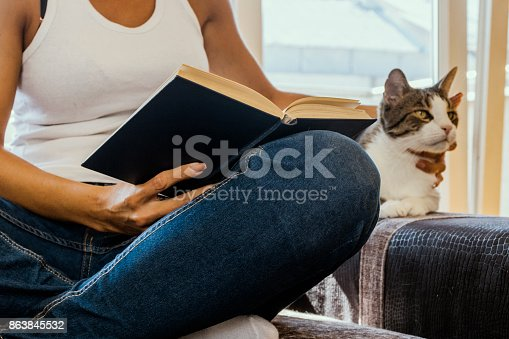 istock woman with a cat by the window reading a book / woman reading a book 863845532