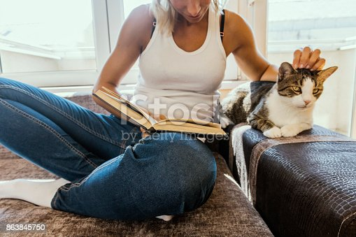 istock woman with a cat by the window reading a book / woman reading a book 863845750