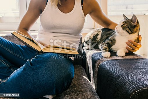 istock woman with a cat by the window reading a book / woman reading a book 863845840