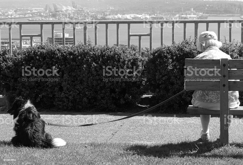 Woman with a dog (black and white) royalty-free stock photo