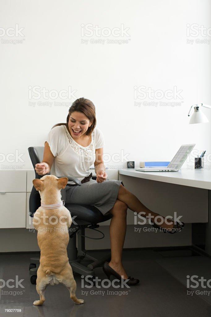 Frau mit Französische Bulldogge Lizenzfreies stock-foto