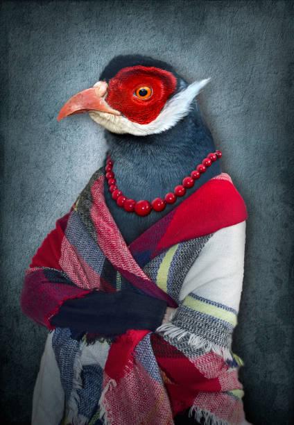 femme avec une tête d'oiseau. graphique de la notion dans le style vintage - art moderne photos et images de collection