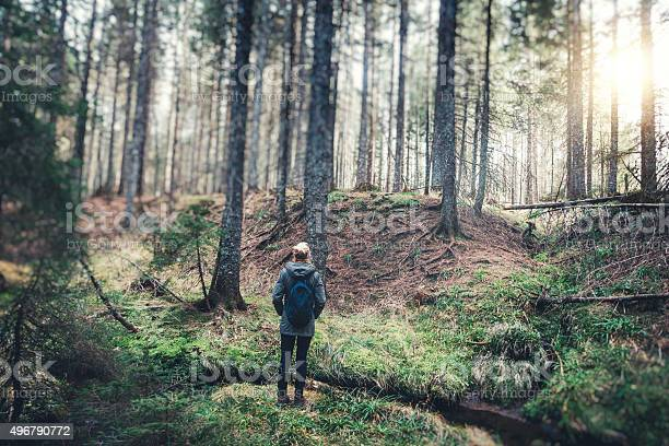 Photo of Woman With Backpack Hiking In The Forest