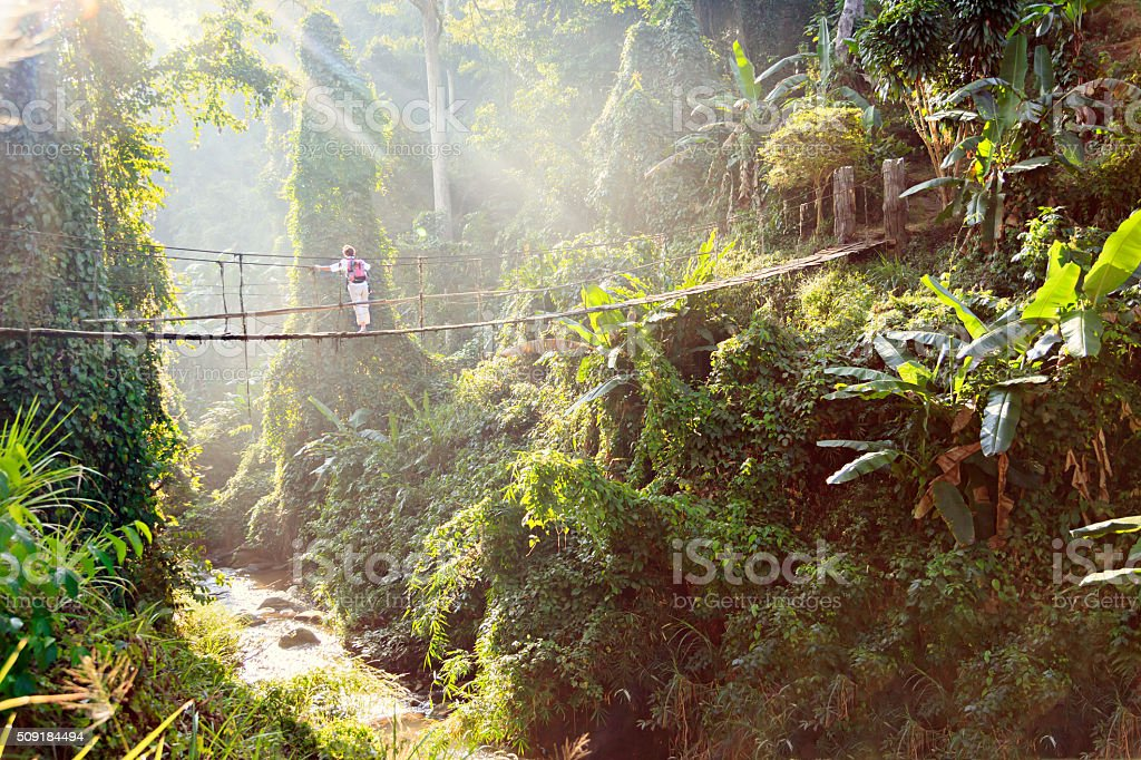 Woman with backpack on suspension bridge in rainforest stock photo