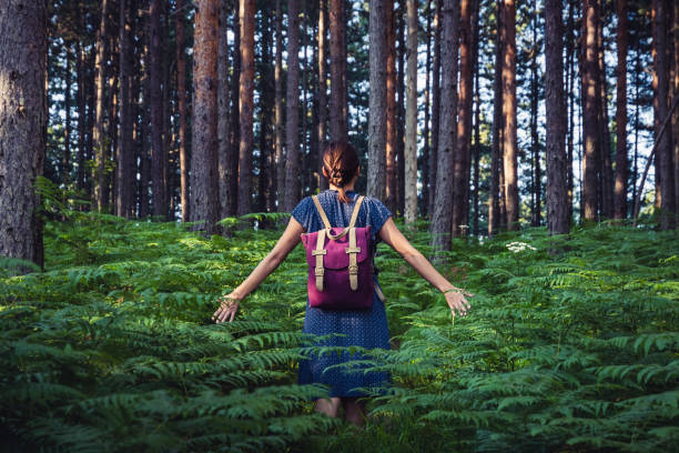 Woman with backpack walk through pine forest with hands outstretched touching fern leaves. stock photo
