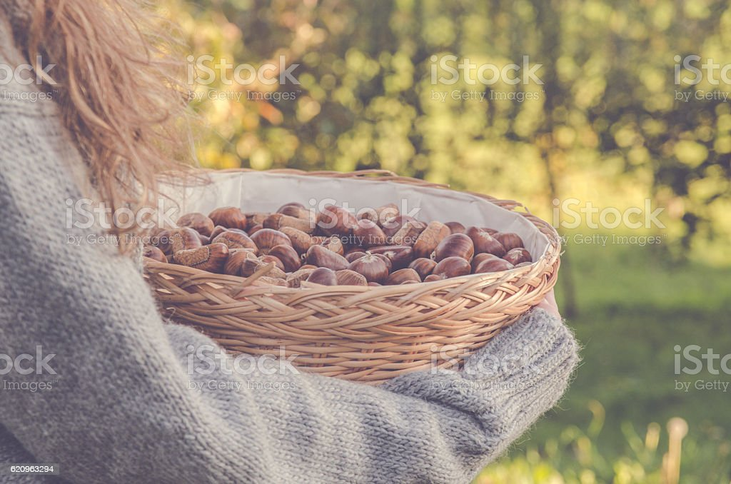 WOman with basket of chestnuts royalty-free stock photo