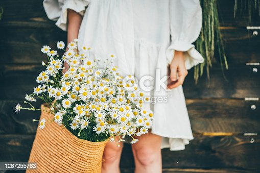 Woman with beautiful chamomiles in bag on wooden background.