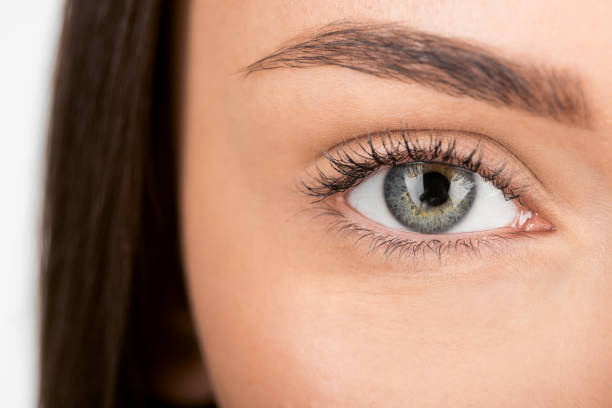 woman with beautiful eye - eyelid stock pictures, royalty-free photos & images
