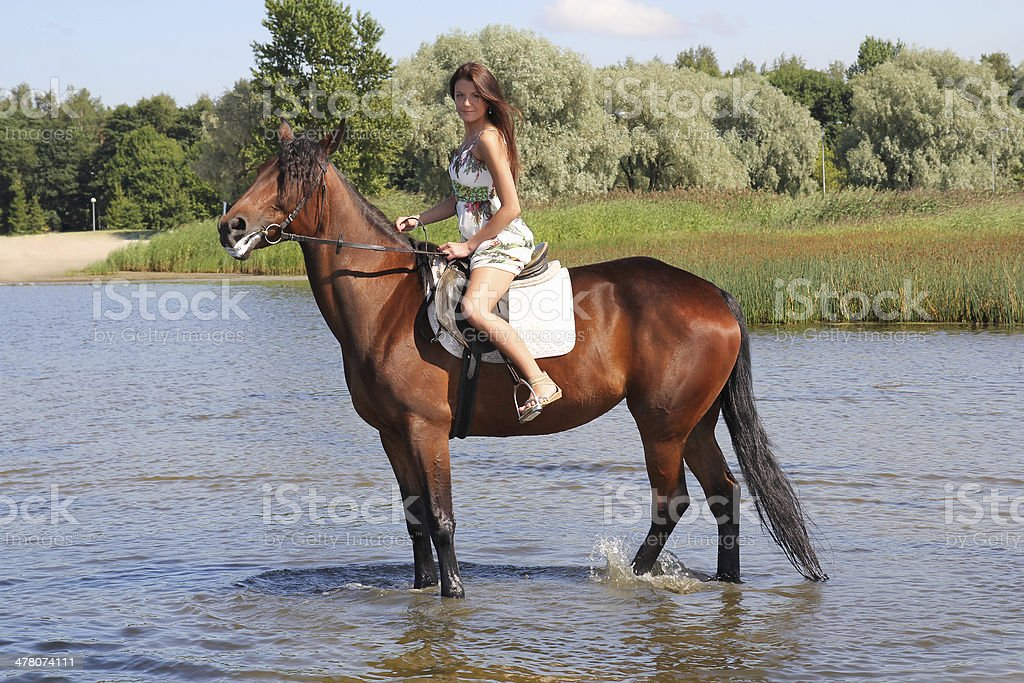 Woman with big brown horse royalty-free stock photo