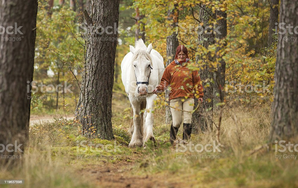 Woman with big white horse stock photo