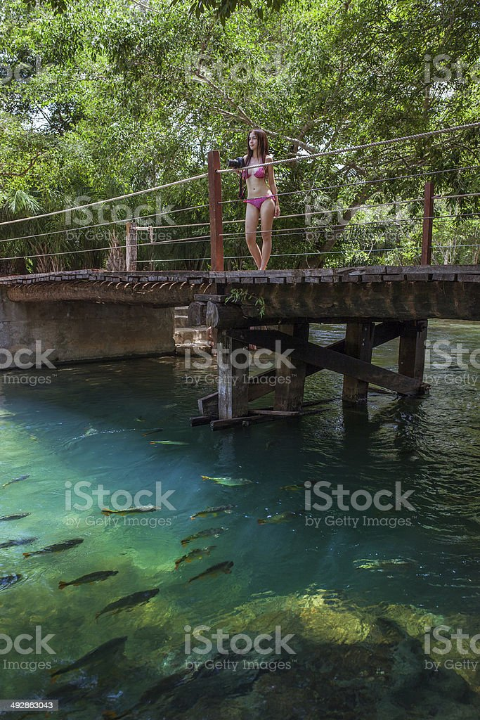 Woman with bikini stands on the bridge in Bonito stock photo