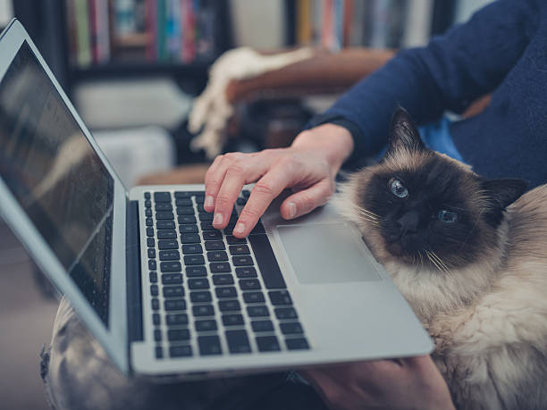 Woman with cat and laptop picture id483708574?b=1&k=6&m=483708574&s=612x612&w=0&h=sa8wgmpj5v idyb3d4p6qqnioybdipnflpudksfljy4=