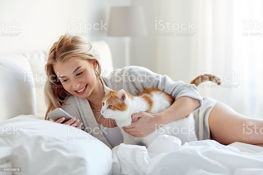 woman with cat and smartphone in bed at home stock photo