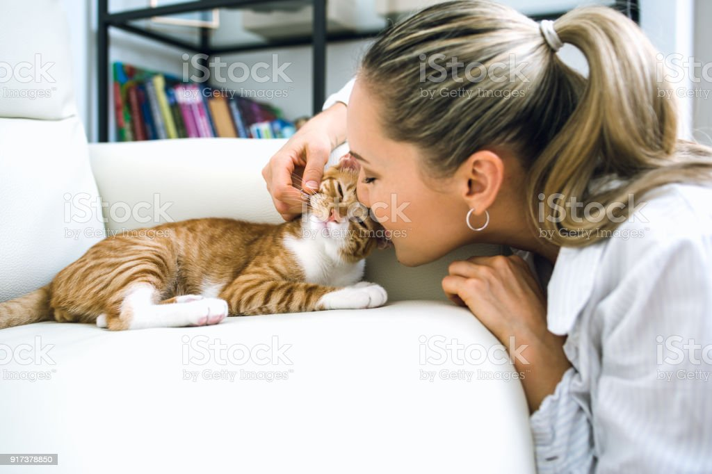Woman with cat at home stock photo