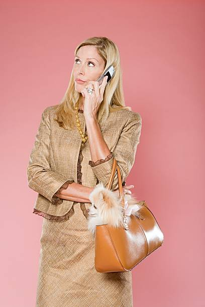 Woman with cell phone and dog stock photo