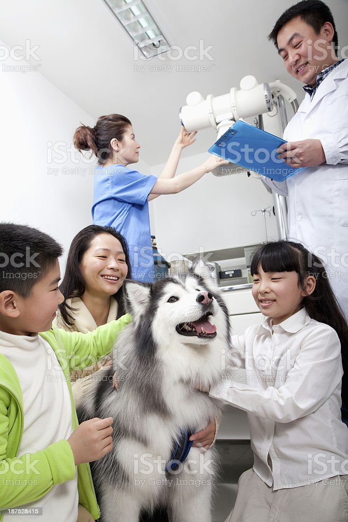 Woman with children and pet dog in veterinarian's office royalty-free stock photo