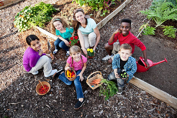 Woman with children in community garden Woman (30s) with children (5 to 11 years) with flowers and vegetables in community garden. community garden stock pictures, royalty-free photos & images