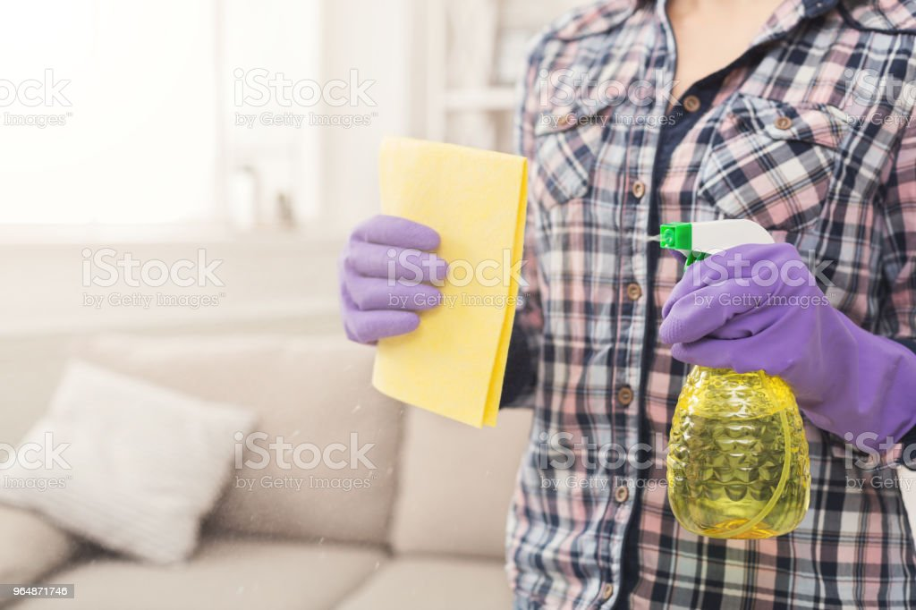 Woman with cleaning equipment ready to clean room royalty-free stock photo