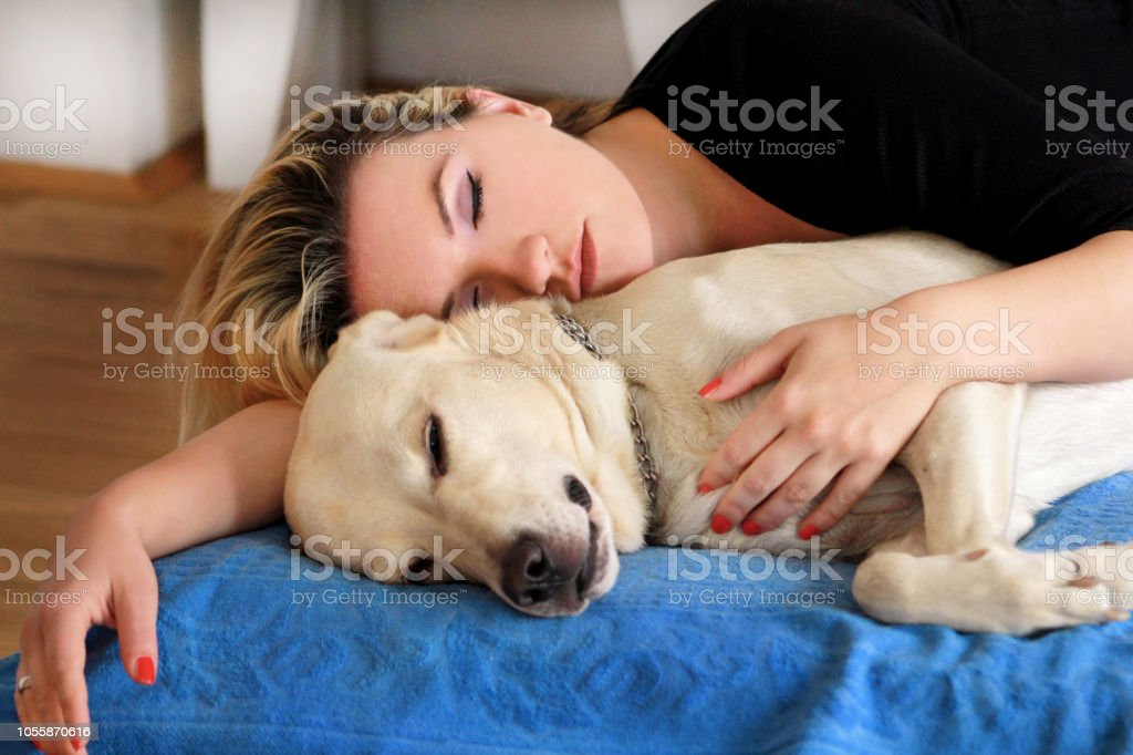 Woman with cute dogs at home. Handsome girl resting and sleeping with her dog in bed in bedroom. Owner and dog sleeping in sofa. Yellow labrador retriever relax. Portrait of woman and her best friend. stock photo