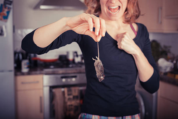 Woman with dead mouse in kitchen stock photo