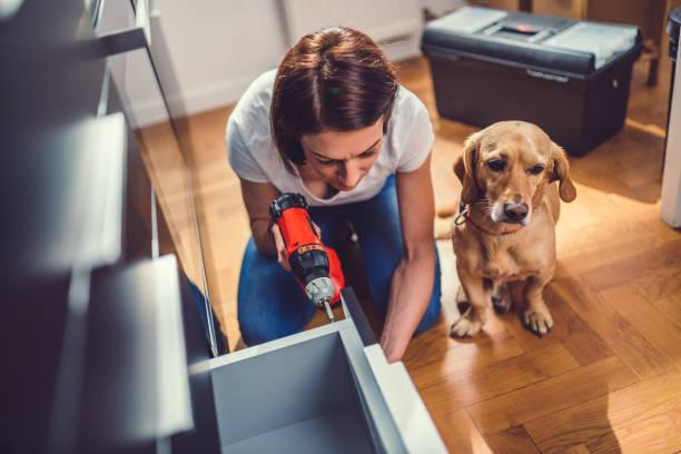 frau mit hund küche erstellen und verwenden ein akku-bohrschrauber - hundezubehör diy stock-fotos und bilder