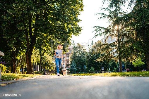 Young Caucasian beautiful woman walking her pet shih tzu dog in a public park on a sunny day.