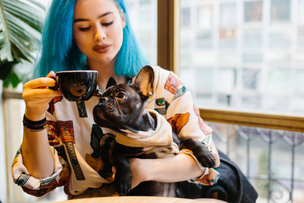 Woman with dog in cafe stock photo