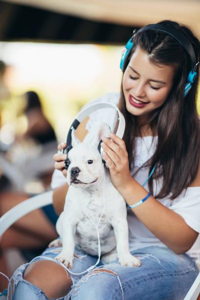 Woman with dog in cafe picture id829338340?b=1&k=6&m=829338340&s=612x612&w=0&h=tfiwft5fz8q3zgk wa12jr xumksdjnnjdvtnmt7b70=