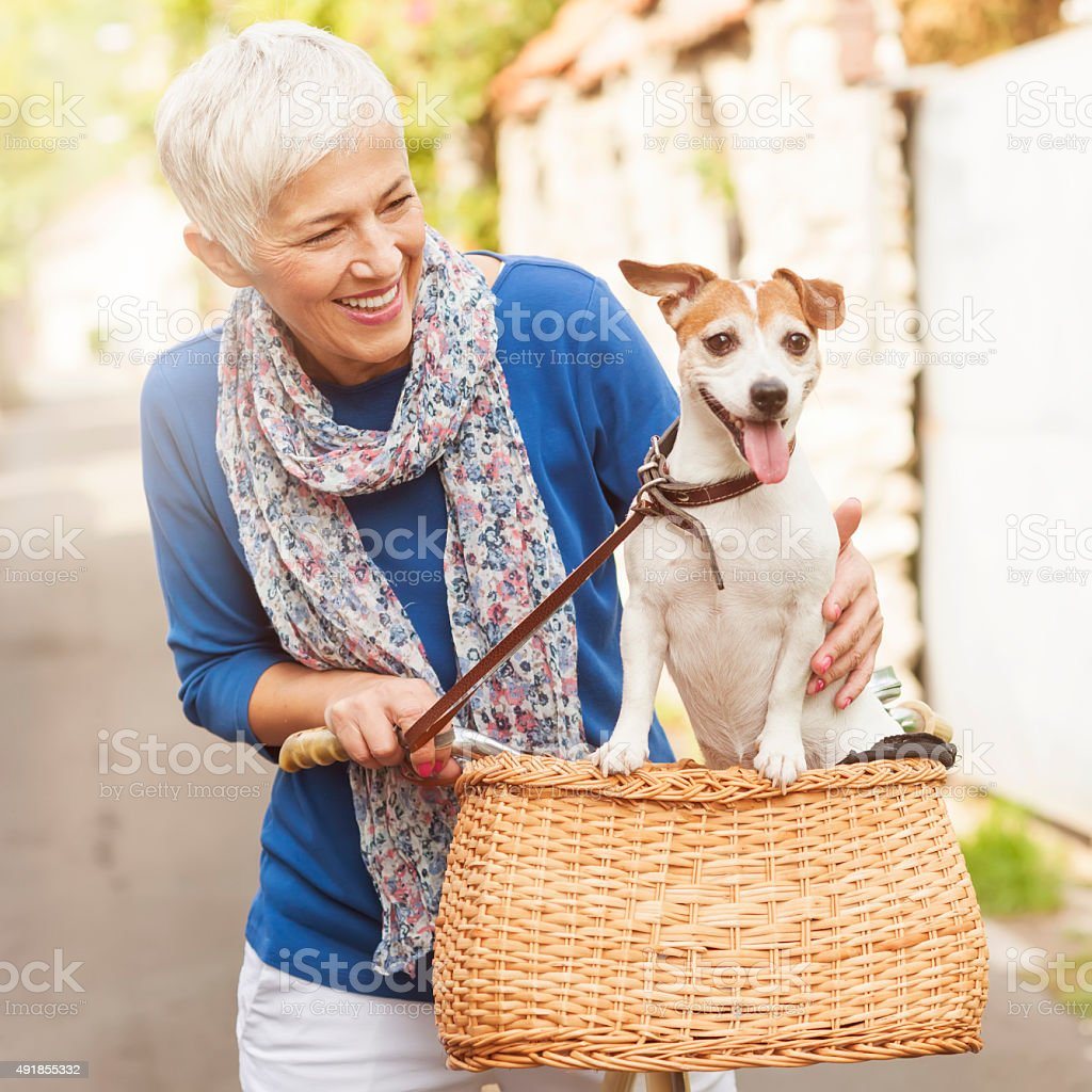 Woman with dog on bicycle stock photo
