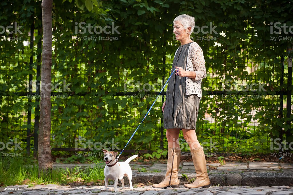Woman with dog stock photo